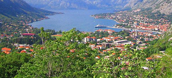 Wyb. Adriatyku